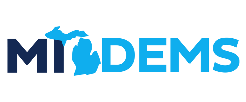 Dem Party News- Choosing Delegates for the 2020 Convention