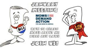 Washtenaw County Moms Demand Action January Meeting