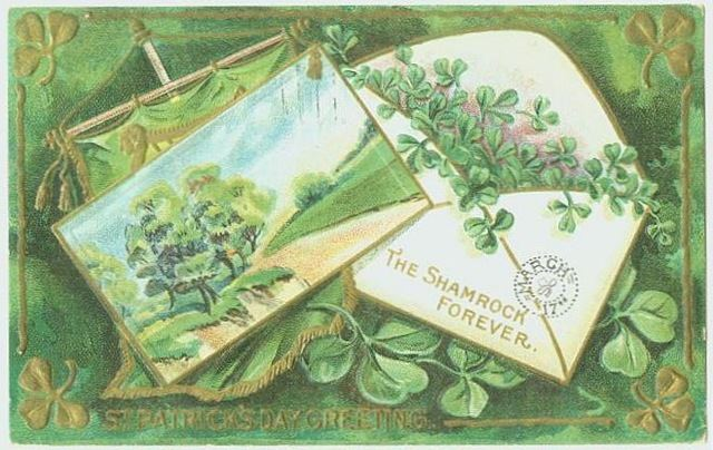 st paddy graphic