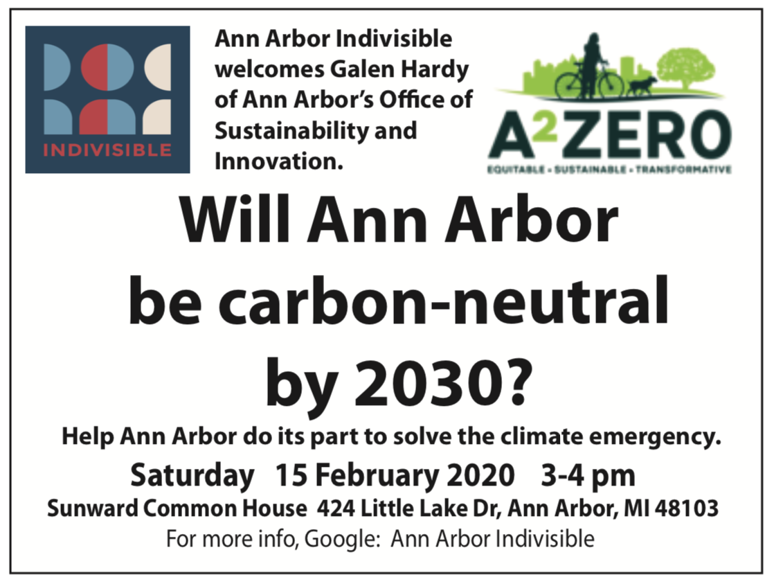 A2 Zero Town hall Indivisible